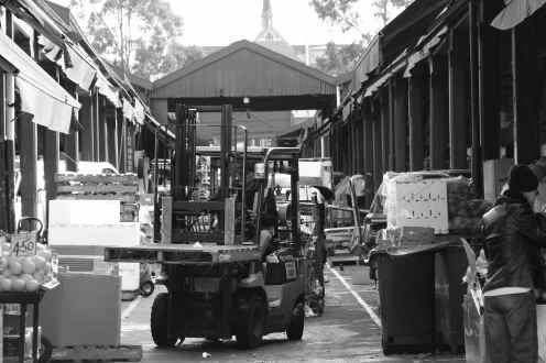 Business as usual in North Melbourne's Queen Victoria Market